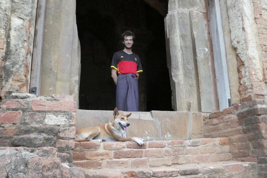 Un doggo garde l'entrée d'un temple perdu