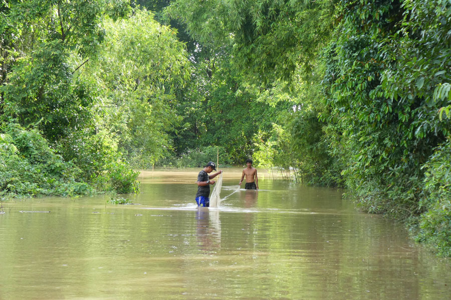Ils pêchent dans les innondations