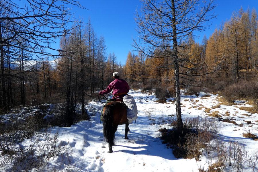 Notre guide à cheval