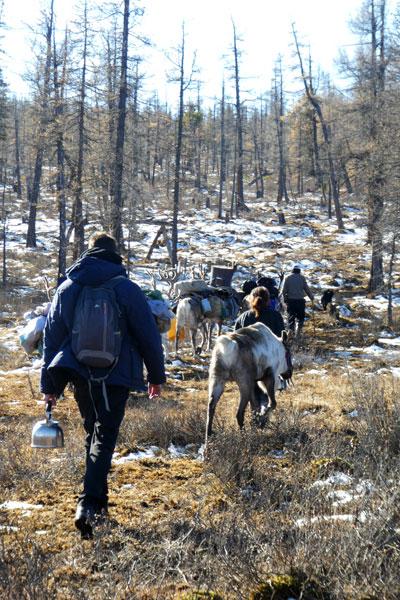 La migration vers le camp d'hiver